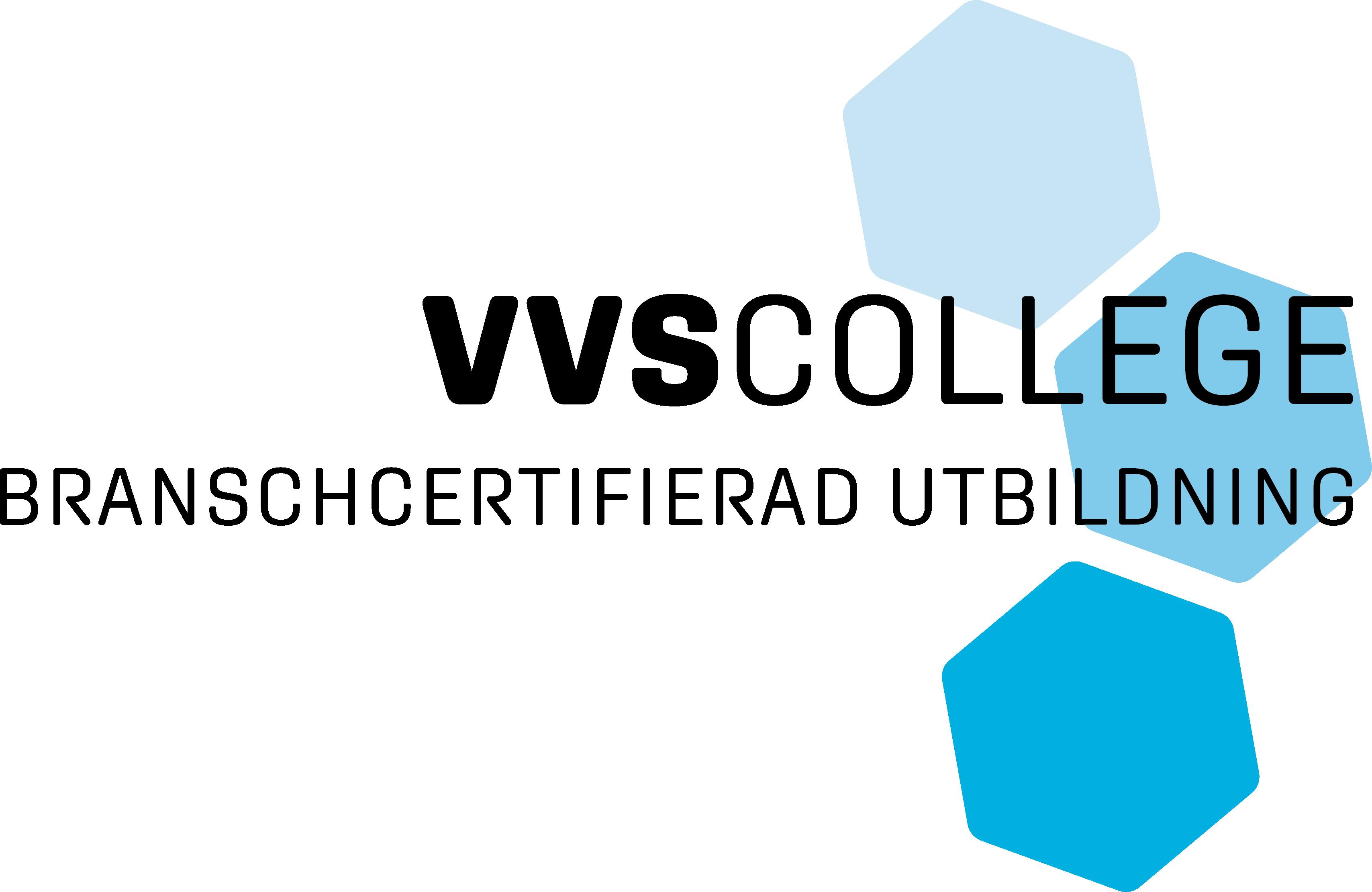 VVS college logo